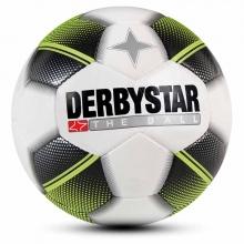 Μπάλα Handball 47 cm Derbystar