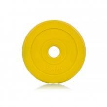 Δίσκος για Μπάρες Body Pump Cement 1,25 Kg