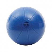 Μπάλα Γυμναστικής AHF-147 PRO 500 kg 55cm Toorx